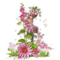 Pink Garden Ziggy