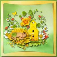 Designer Series- Bee Creations fresh