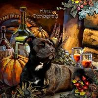 Happy Thanksgiving Pet Wishes