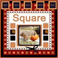 SQUARES of all kinds and a Squirrel Message