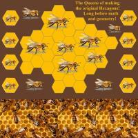 The ORIGINAL Hexagons