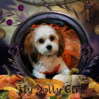 ~My Halloween Dolly Girl~