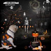 Halloween Pet Scene 2014 Happy-Halloween