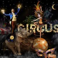 The Night Circus Scene