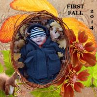 First Fall
