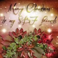 Christmas Card SBF 02