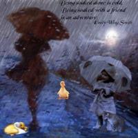 A Friend in the Rain.