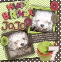 2015 Jojo's Birthday