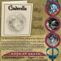 We love our pets-Cinderella