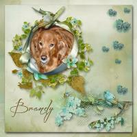 In Memory of Brandy 02