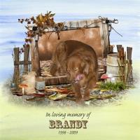 IN MEMORY OF BRANDY 2