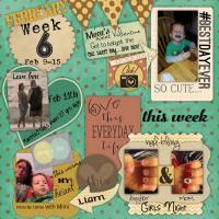 Week 6 Feb 9-15