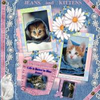 Life is better with Kitties in Blue Jeans!
