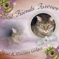 Sweet & Precious Gidget