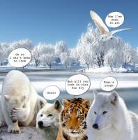 Fur Watch
