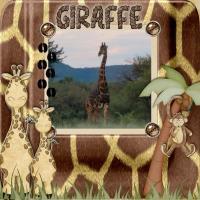 The tall giraffe