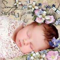 Baby Shyla