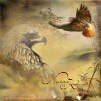 Eagles aflight