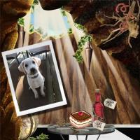 Molly's Down the Rabbit Hole