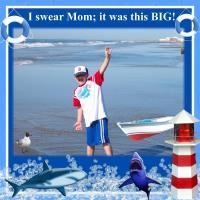 On the Beach Great White Shark