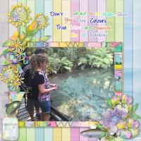 Rainbow Trout Rotorua