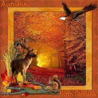 The Glory of Autumn...