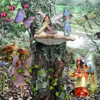 Jackys Fungi