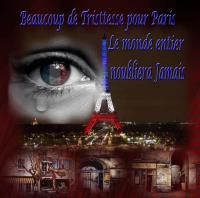 FOR PARIS 11 13 2015