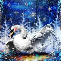 ~Beautiful Winter Swan~