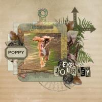 Poppy's Adventure
