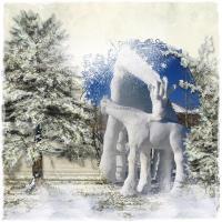 snow giraffes
