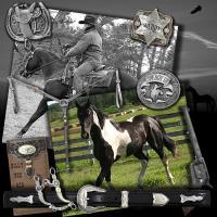 Wrangler Jeans & Appaloosa