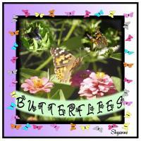 butterflypage