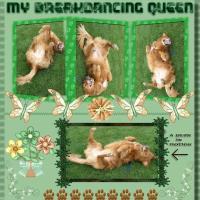 Breakdancing Queen Furbaby Of Mine