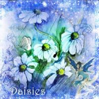 Daisies study in blue