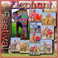 Festival Of  The Elephants