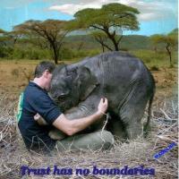 *Trust has no Boundaries*
