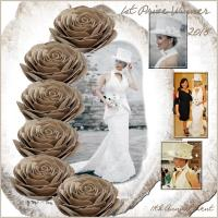 1st Prize - 2015 Toilet Tissue Wedding Dresse
