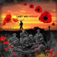 *11-11-11 Lest We Forget*