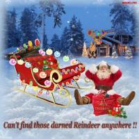 **Santa's Lost his Reindeer**