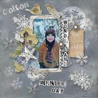 Cold Winter Day~
