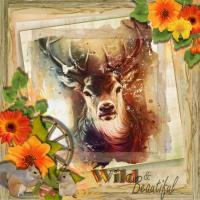 Wild and beautiful