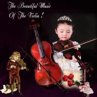 The Beautiful Violin