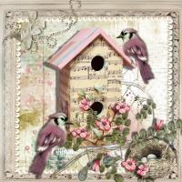 Musical bird house