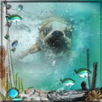 Tyson the swimmer
