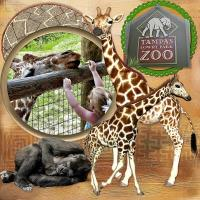 Tampa's Lowry Park Zoo~
