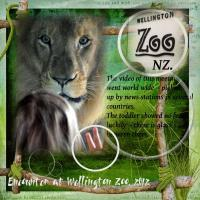 Wellington Zoo NZ