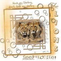 Lions Sleep Tonite
