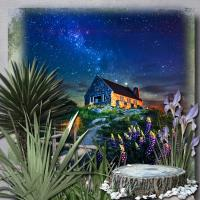 The Natural World #4 STARS