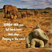 **Dumbo - Get Back Here**